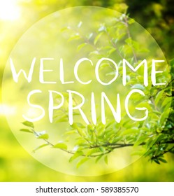 Welcome spring images stock photos vectors shutterstock beautiful greeting card with words welcome spring m4hsunfo