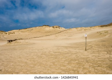 Beautiful Grey Dunes (Dead Dunes) at the Curonian Spit in Nida, Neringa, Lithuania