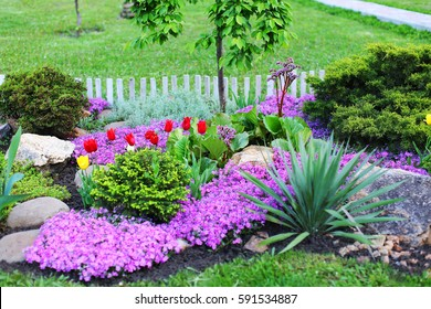 Beautiful grounds with plants and landscape design. Landscaped area with green spaces, plants, flowers and trees in the summer or spring