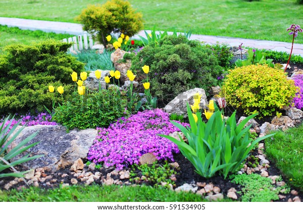Beautiful Grounds Plants Landscape Design Landscaped Stock Photo