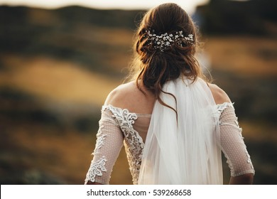 Beautiful hairpin and veil on hair of the bride