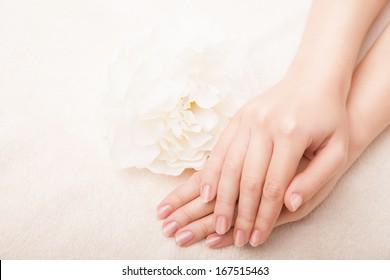 Mână frumoasă cu manichiură franceză perfectă și floare albă