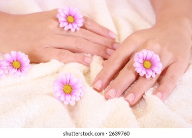 beautiful hands with daisy flowers - hands care