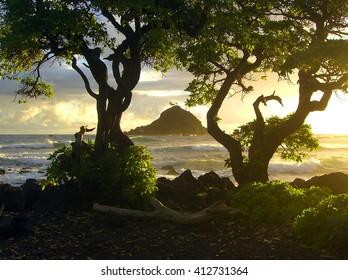 Beautiful Hawaiian sunrise  with island and trees on Maui shore - landscape color photo