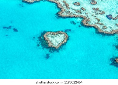 Beautiful Heart Reef found in the Great Barrier Reef along the turquoise waters of the Whitsunday islands in Queensland Australia.