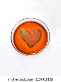 The beautiful heart shape streak of metalic black colony of E. coli on the EMB agar plate isolated on white background