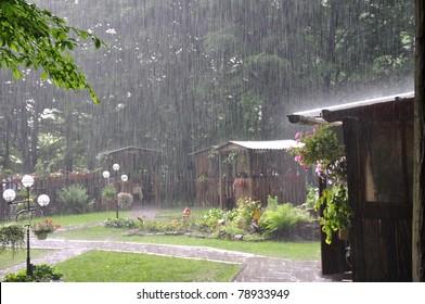 Beautiful heavy summer rain