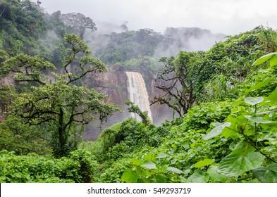 Beautiful hidden Ekom Waterfall deep in the tropical rain forest of Cameroon, Africa
