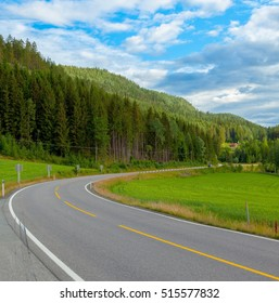 Beautiful highway road landscape from Oslo to Bergen in norwegian mountains with green grass, forest and blue sky with white clouds, Norway, Europe