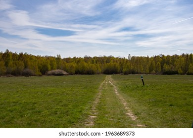 beautiful hiking trail in the Drover Heide nature reserve