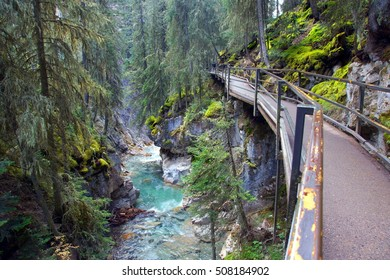 Beautiful hiking trail at Johnston Canyon brings you to scenic nature views and spectacular waterfalls