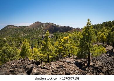 beautiful hiking trail on volcanic island la palma on canary islands