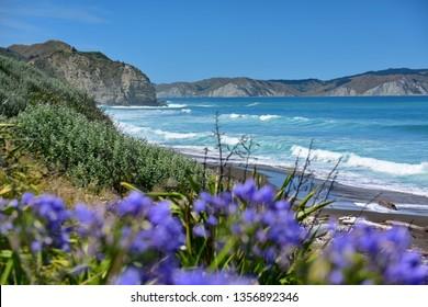 Beautiful hill and beach landscape at Mahia Peninsula in New Zealand