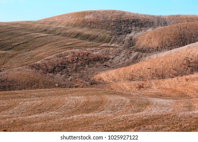 Beautiful hill of the Italian region of Tuscany with smooth lines on the background.