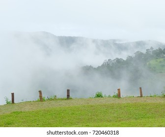Beautiful hill in the mist. Mountain view in morning with foggy moving among look so great view like in the heaven