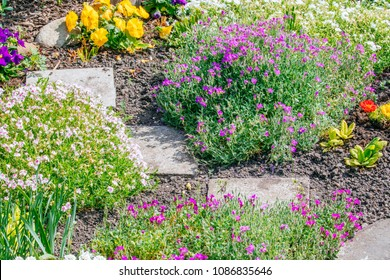 Beautiful Home garden Allotment in spring time