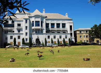 Beautiful home and wild geese