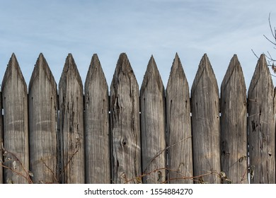 Beautiful horizontal texture of old gray boards with knots and hammered nails is on the blue sky background
