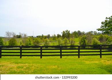 Beautiful Horse Farm in Lexington, Kentucky