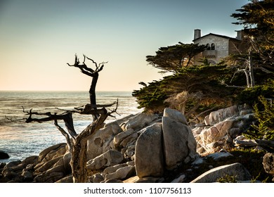 Beautiful house and dead tree between rocks next to the coastline of the pacific ocean in the Carmel Highlands during sunset, California, West Coast, USA