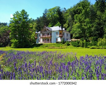Beautiful house in nature and lavender in Luhačovice, picturesque spa town in South Moravia, Czech Republic. Luhacovice is famous for Art Nouveau architecture by Slovakian architect Dušan Jurkovič. - Shutterstock ID 1772000342