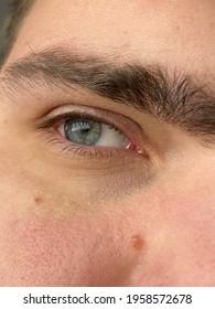 beautiful human eye, eyeball and eyebrows