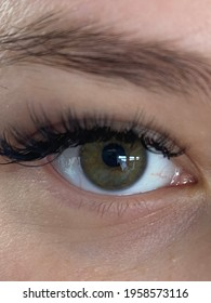 beautiful human eye, eyebrows and eyelashes