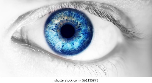 beautiful human eye, macro, close up  blue, yellow, brown,