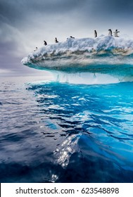 Beautiful icebergs with adelie penguins on top flow near Antarctic peninsula