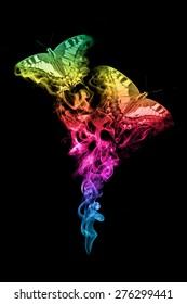 beautiful image of a butterfly with a rainbow gradient.. animal kingdom. flying butterflies. wildlife picture.  tattoo.
