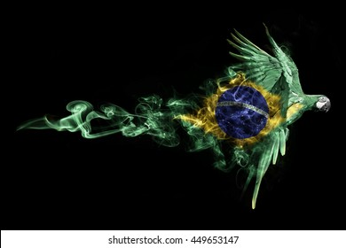 beautiful image of a flying macaw,animal kingdom, olympics, macaw in the colors of the brazilian flag