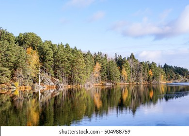 A beautiful image of a forest lake in autumn