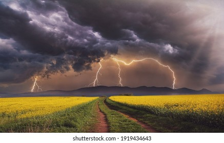 A Beautiful Image Of Landscape Feild Spring