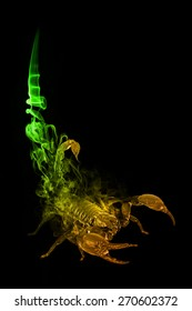 beautiful image of a scorpion.. animal kingdom. poison tale. wildlife picture. great  tattoo. smoked tale. gold color and green.