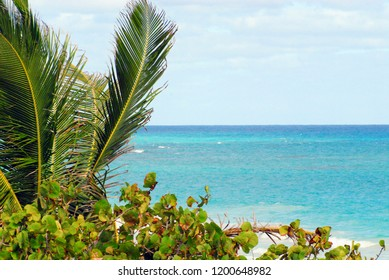 A beautiful image of a tropical beach scene on the island of Eleuthera in the Bahamas