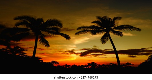 Beautiful Image of a typical Hawaiian Sunset
