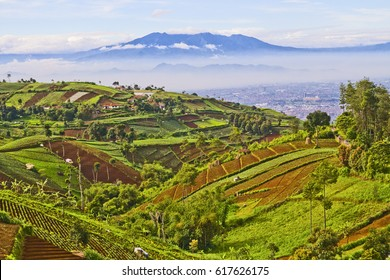 beautiful Indonesian landscape, west java, Bandung view