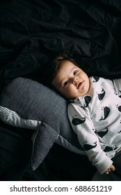 Beautiful infant baby girl in sweater with whales laying next to whale soft toy on the black background.