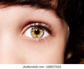 A beautiful insightful look boy's eye. Close up shot