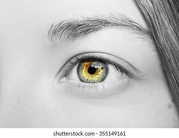 Beautiful insightful look eyes