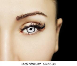 Ein wunderschöner, aufschlussreicher Look verführt das Auge der Frau.  Schöne Augen Make-up Detail, perfekte Schönheitswimpern