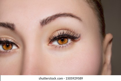 A beautiful insightful look woman eyes. Close up shot.