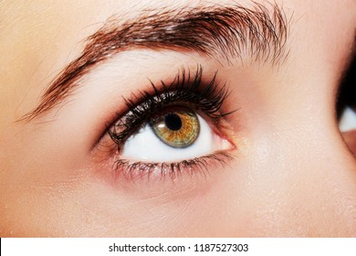 A beautiful insightful look woman's eye. Close up shot