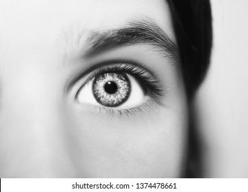 A beautiful insightful looking eye. Close up shot.