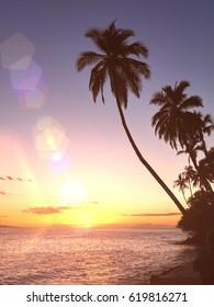 Beautiful and inspiring Hawaiian sunrise with palm tree silhouette