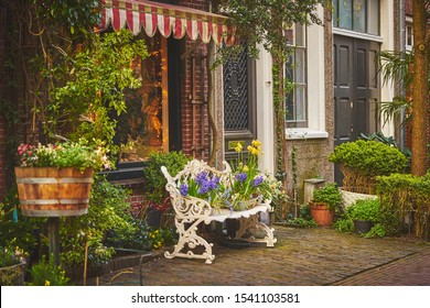 Beautiful iron bench decorated with the flowers near dutch house