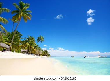 Beautiful island and exotic tropical nature