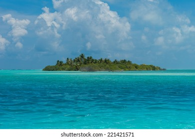Beautiful Island with palms in the ocean, Maldives