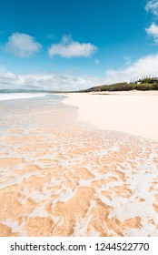 Beautiful Island Paradise of Clear Aqua Blue Ocean Waves Coming on Sandy Golden Seashore and White Sand Beach and Rock Cliffs on Perfect Day in Molokai Hawaii