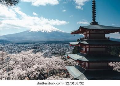 Beautiful in Japan